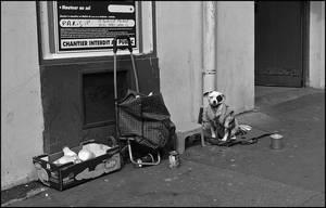 Nils Labadie Photographs - 431 by SUDOR