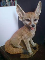 Fennec Fox by mattcummings