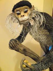 Douc Langur Colobine Monkey by mattcummings