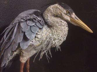Grey-Heron by mattcummings