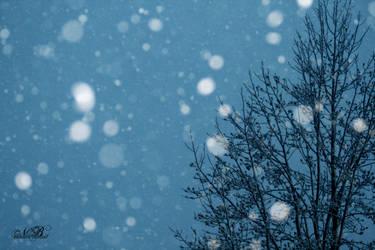 Snowdust Seranade by Silver-Dew-Drop