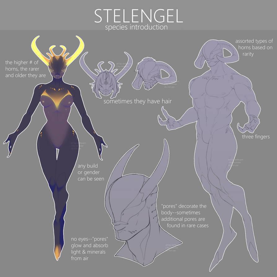 closed_species_introduction__stelengel_b