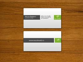 Eau de Web Business Cards by TheSa1nT