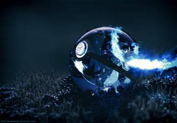Pokeball of Mega Charizard X by Jonathanjo