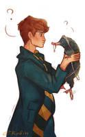 Newt Scamander by EnotRobin