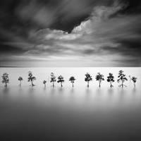 Ocean's Twelve by Chaerul-Umam