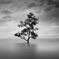 Laguna II by Chaerul-Umam