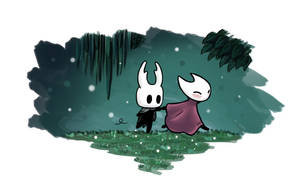 Follow me ! ~ Hollow Knight by Awlita