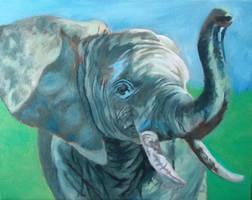 Elephant by Jarredsart
