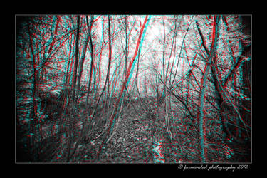 3D in the woods by farminded