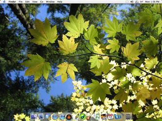 Desktop 10.11.2k4 by daguy