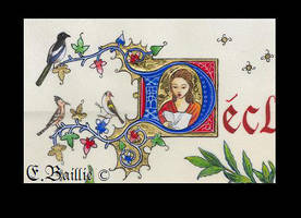 illuminated title by zebabeth