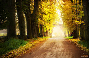 autumn pass by ladyrapid