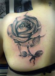 Rose back by tatuato