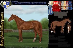 CI Winchesterlikethegun by MistyofSunrise