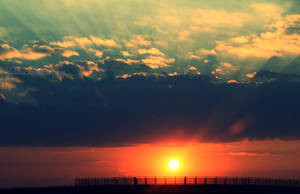 I need my sunshine by LaLillaa