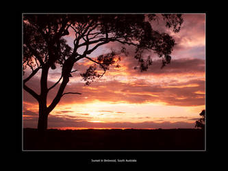 Sunset in Birdwood 2 by endless-sky