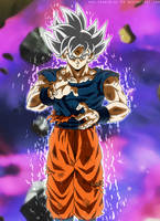 The Final Form - Perfect Ultra Instinct by SenniN-GL-54