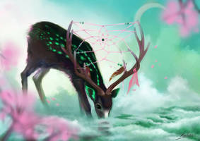 The Dream Catcher by Wolka-Art