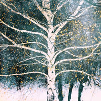 the wise tree stands sleeping in the cold by bluePartout