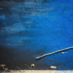 way too blue by bluePartout
