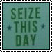 Seize This Day stamp by katamariluv