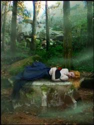 Sleeping Beauty Fair by Ciro1984