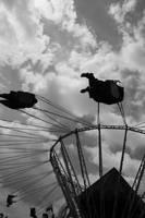 Swingers by vwake