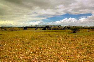 Beyond the Plains by vwake