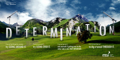 DETERMINATION by raitei96
