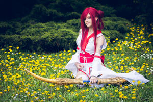 Erza Scarlet (Sacred Arrow) Fairy Tail cosplay by AnitramNoriko