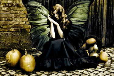 Lovely butterfly by artofnoart