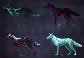 [ CLOSED ] Cold Colours Wolf Adopts by FellFallow
