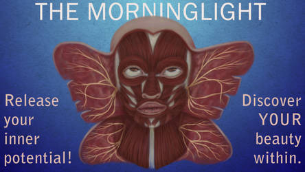 Morninglight Butterflies by MelAddams