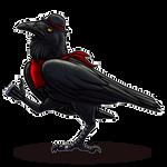 Poe Enforcer by Paladin-Ciel