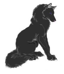 Wolf by VampireKnightAidou