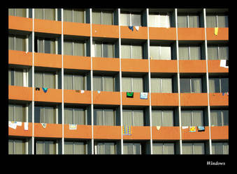 Windows by Ziomax