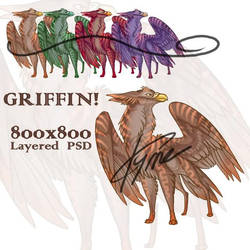 Griffin Panel by zilowar