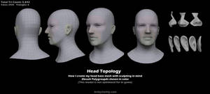 Head Topology by Art-by-Smitty