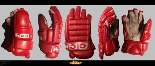 Reference - Red Wing Glove by Art-by-Smitty