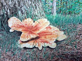 Fungus Study .  .  . by RuvellKhaosArt