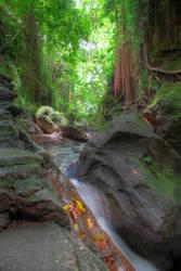 Sacred Monkey Forest - Ubud Bali by LoveArtOnline