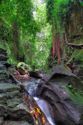 Sacred Monkey Forest - Ubud Bali 002 by LoveArtOnline