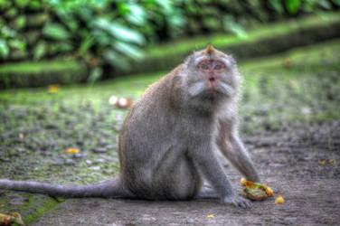 Sacred Monkey Forest - Ubud Bali 003 by LoveArtOnline