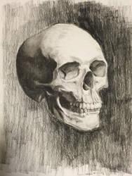Refined Skull Drawing by AndrewJJaspersen