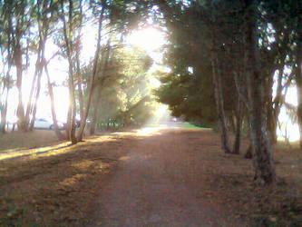 Morning Walk by Axel-Letterman