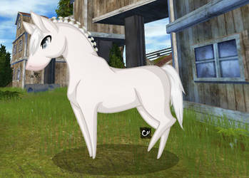 Star Stable Online | Chibi | Thunderblood by cross-creature