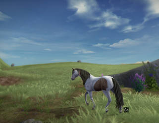 Star Stable Online | Medicine Hat | Edit by cross-creature