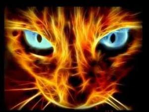 leopard1220's Profile Picture
