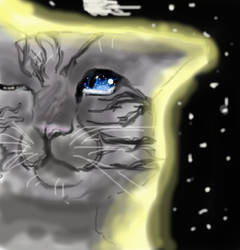 power of the starz: jayfeather by leopard1220